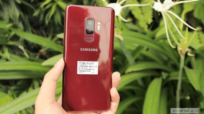 Mặt lưng Galaxy S9 Plus Hàn