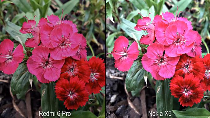 Nokia_X6_va_Redmi_6_Pro_6_1