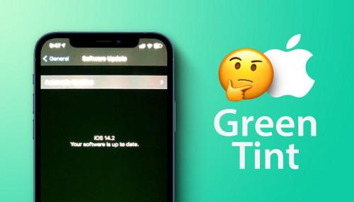Cách kiểm tra iPhone 12 có lỗi màn hình xanh hay không để tránh trước khi chọn mua