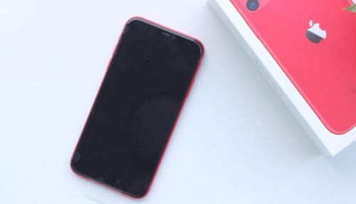 iPhone 11 Đỏ chưa đủ nổi bật, hãy khám phá thêm các lựa chọn màu này