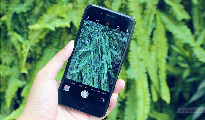 Hỗ trợ tốt từ phần mềm giúp iPhone 7 Plus CPO tạo ra những bức ảnh sáng tạo