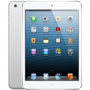 iPad Mini 4 Wifi + 4G Cũ 99%